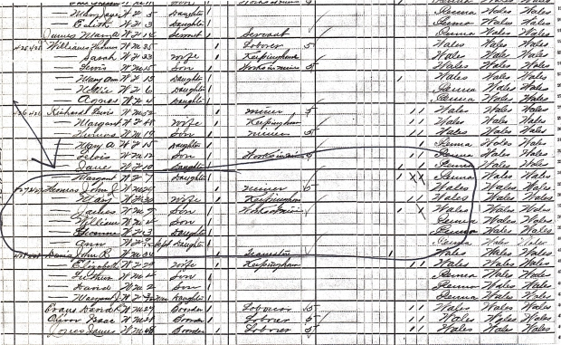 original 1880 census